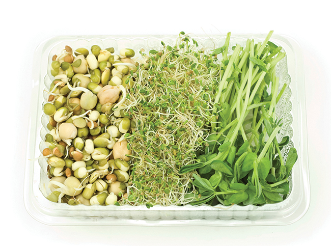 Alessandra Felice explains the ins and outs of sprouting and why it is extremely beneficial to your health...