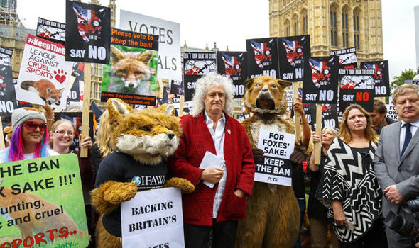 brian-may-animal-rights-protest-732725