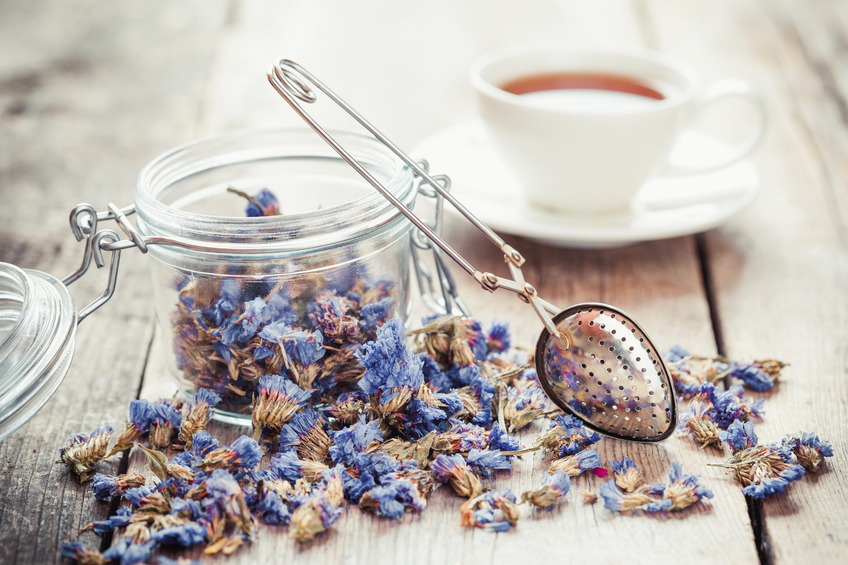 Charlotte Willis and herbalist Nadine Hickman guide us through an introduction to herbal medicine, showing how you can grow and brew your way to better health – broomstick not included!