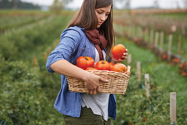 Organic food: Is it worth the price tag?