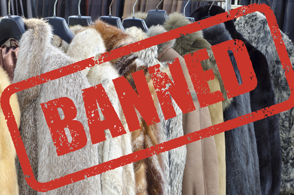 Germany votes to shut down remaining fur farms