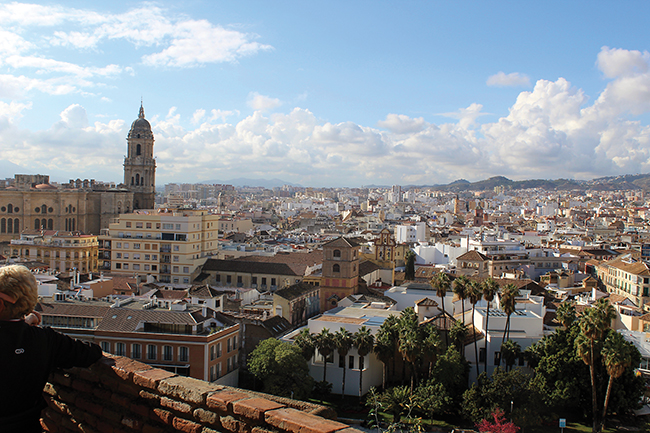 A vegans guide to... Malaga
