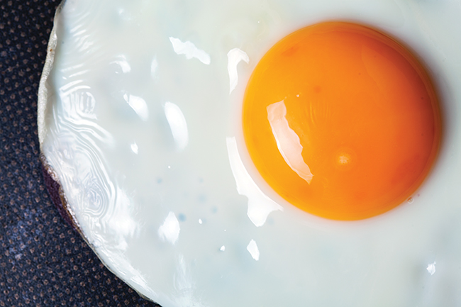 Hard-boiled facts: Why eggs aren't good for your health