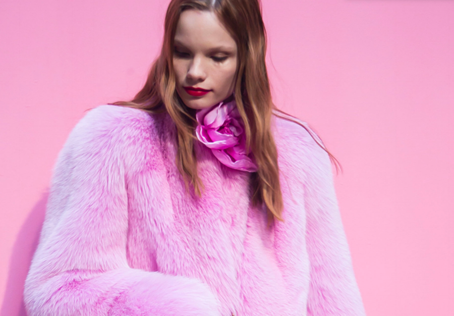 Gucci bans use of fur saying 'It's not modern'