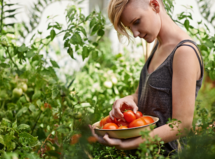 how to grown your own food