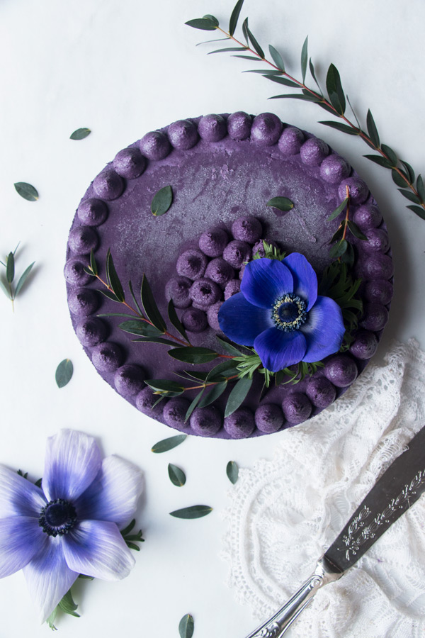Wild blueberry cheesecake with a blue flower on top