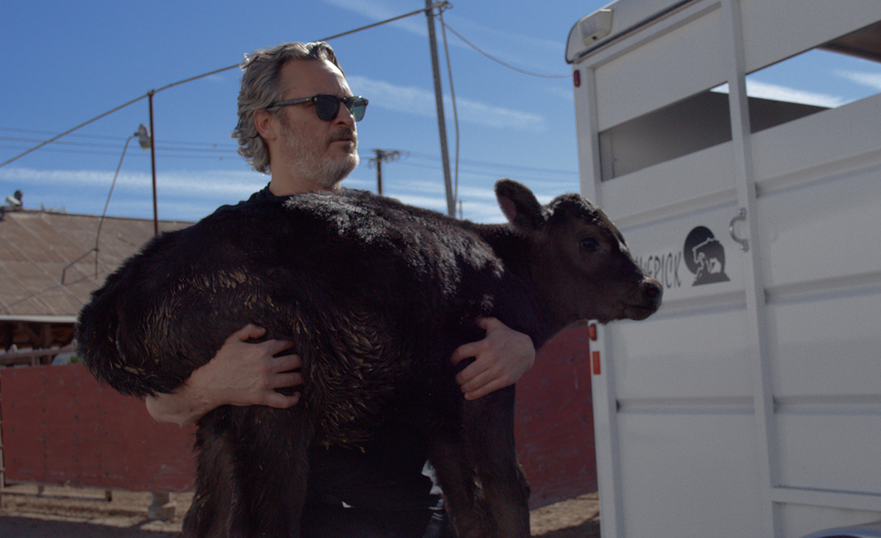 Joaquin Phoenix rescues a cow and her newborn calf from slaughter hours after winning an Academy Award