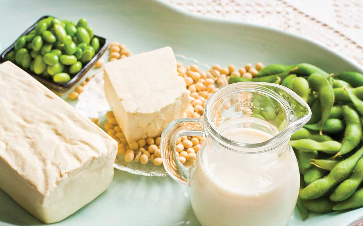 Soya think you know it all? Here's the facts about soya you might not know