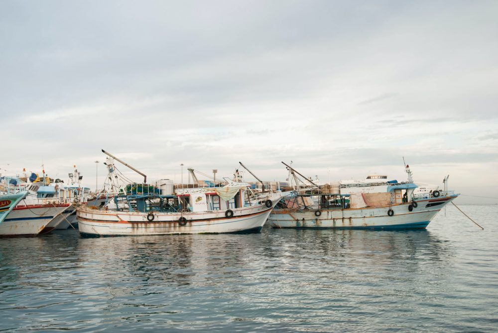 Overfishing: Why aquaculture isn't the solution