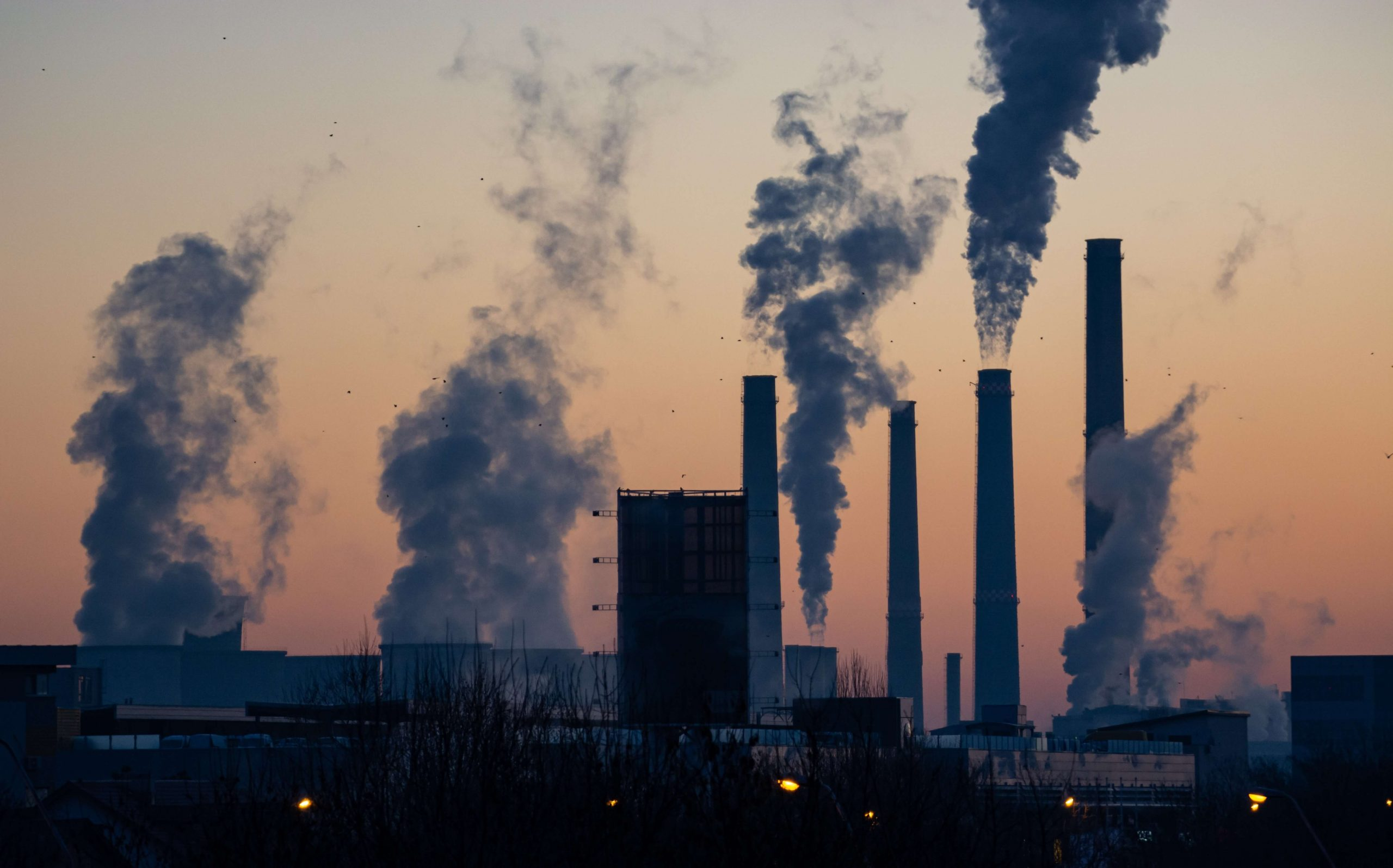 Environmentally Toxic: How environmental toxins can affect your body