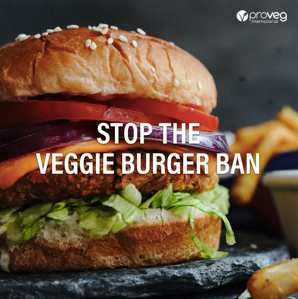 Are veggie burgers doomed to become 'veggie disks'?