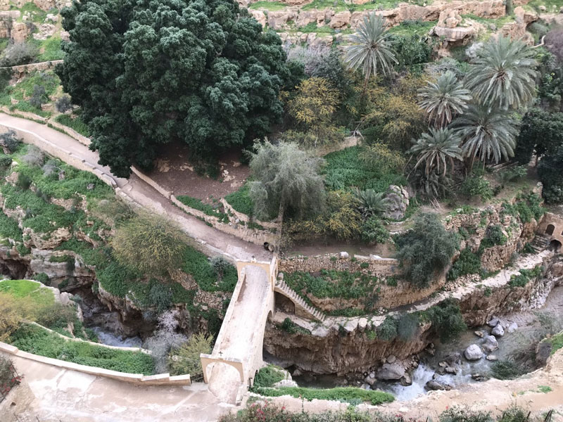 A visit to Jericho helps bring biblical locations to life