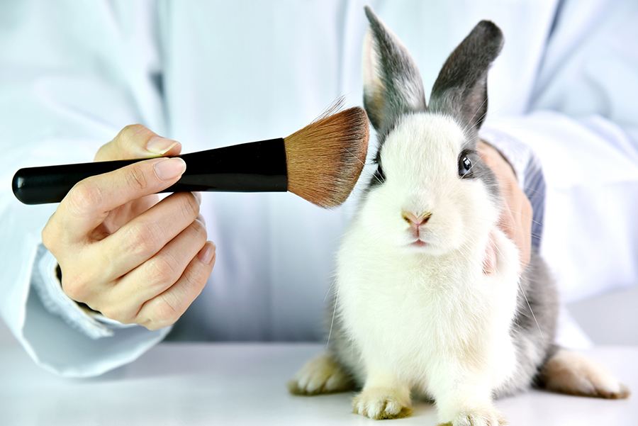 China ends mandatory animal testing of  imported 'general' cosmetics