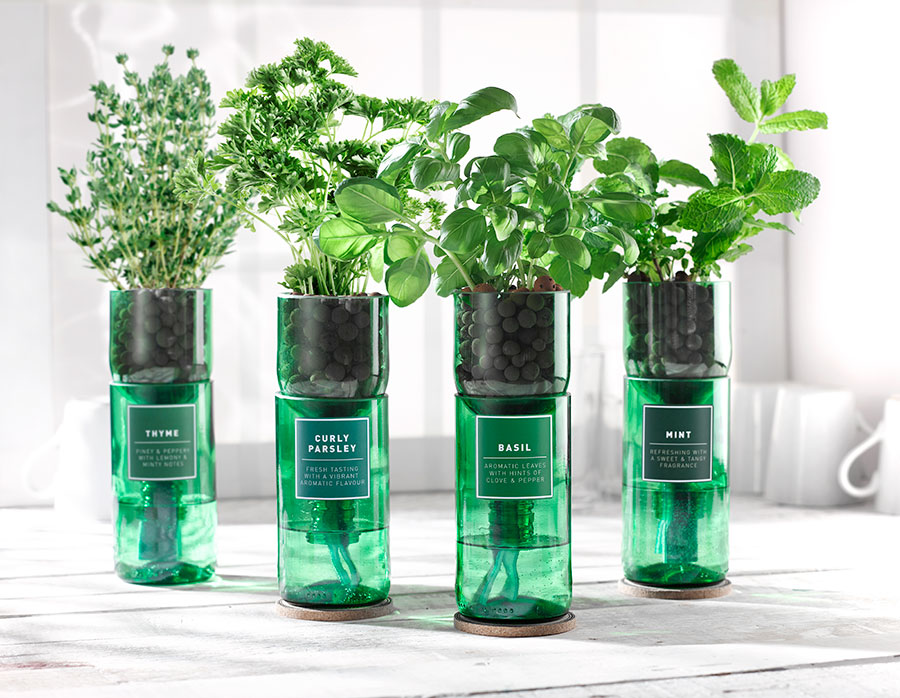 WIN! A sustainable herb growing kit gift set from Hydro-herb!