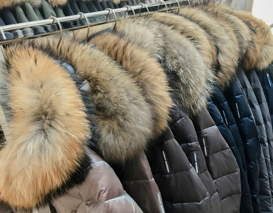 Israel becomes first country in the world to ban the sale of fur for fashion