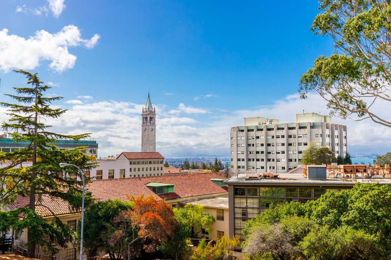 Berkeley commits to providing only vegan meals to slash animal product consumption
