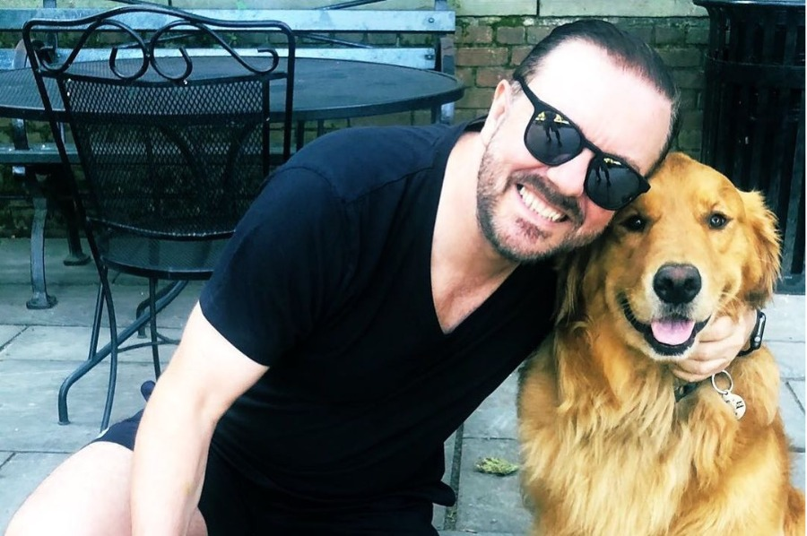 Ricky Gervais calls for end to 'disgusting' fake animal rescue videos on YouTube