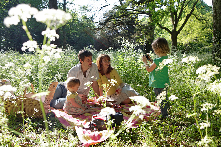 Essential products for picnics with The Vegan Trademark