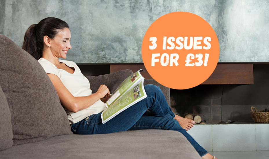 Try 3 issues of Vegan Food & Living magazine for £3!