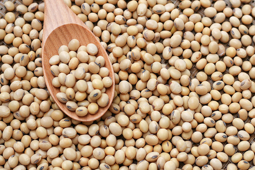 Soya allergy: The causes, symptoms and how to treat it
