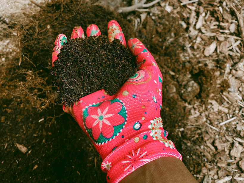 Try mixing your old compost with the new to minimise waste.