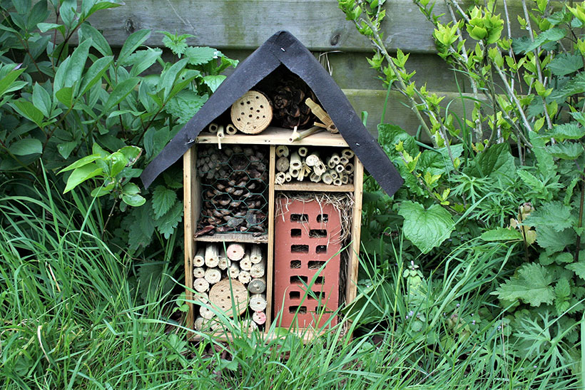 Build a bug hotel using odds and ends you already have to attract insects to your garden